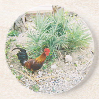 Coaster_Rooster Coaster