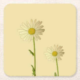 Coaster with daisy flowers