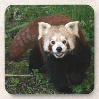 coasters - red panda