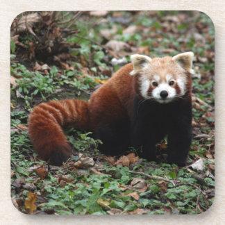 Coasters - red panda 2