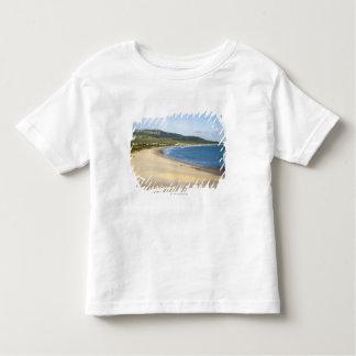 Coastline Beach Along The Coast Near Tarifa Toddler T-Shirt