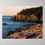 Coastline of Acadia National Park , Maine Posters