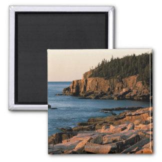Coastline of Acadia National Park , Maine Square Magnet