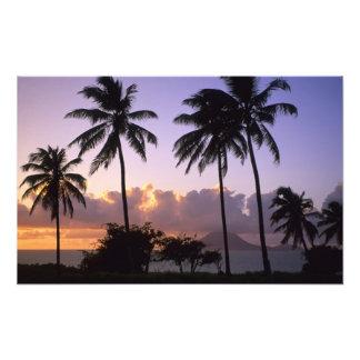 Coastline St Kitts Photograph