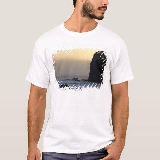 coastline with stormy seas T-Shirt