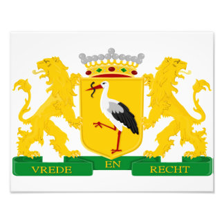 Coat of arms of The Hague, The Netherlands. Art Photo