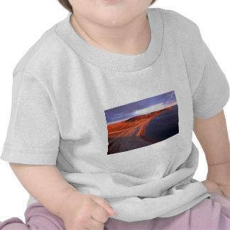 Coats Island Coastline, Hudson Bay, NWT, Canada Tee Shirt