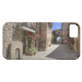 Cobblestone street, stone buildings, historic barely there iPhone 5 case