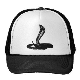 Cobra - black cap