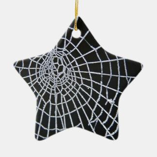 Cobweb Ceramic Star Decoration