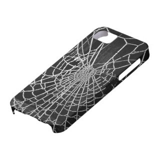 Cobwebs iPhone 5 Covers