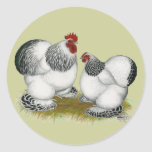 Cochins:  Columbian Bantams Round Stickers