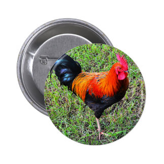 Cock-A-Doodle-Do 6 Cm Round Badge