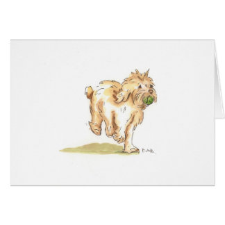 'Cockapoo' greetings card for any occasion.