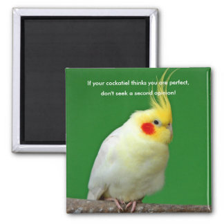 Cockatiel bird funny, humour fridge magnet