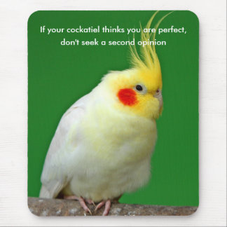Cockatiel bird humour fun mousepad