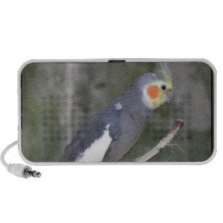 Cockatiel Bird Notebook Speakers