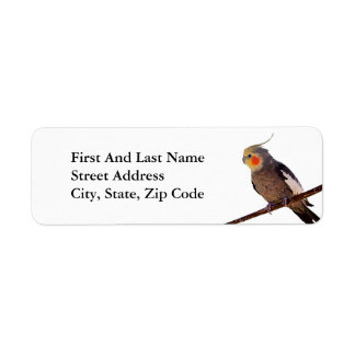 Cockatiel Gray and Yellow Pet Bird Photograph Return Address Label