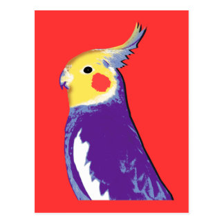 Cockatiel Pop Art Postcard