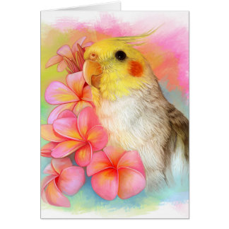 Cockatiel with frangipani card