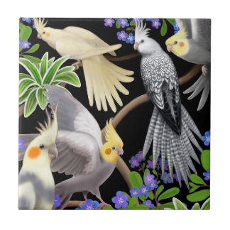 Cockatiels in Forget Me Nots Tile