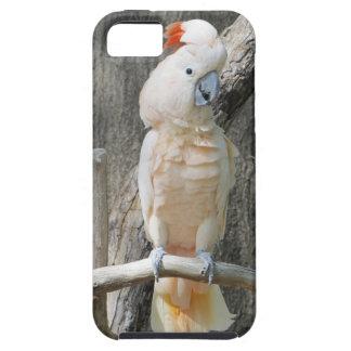 Cockatoo iPhone SE + iPhone 5/5S, Tough Phone Case