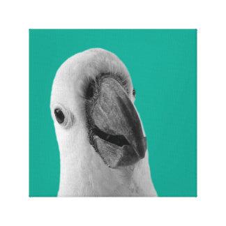 Cockatoo parrot tropical animal photo black white canvas print
