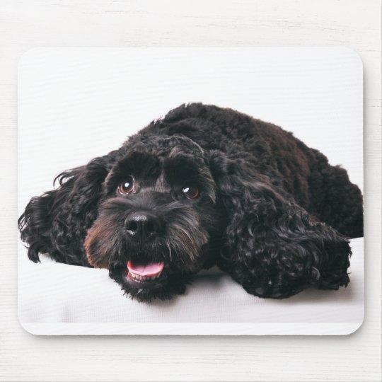 cocker poodle mix puppy mousepad