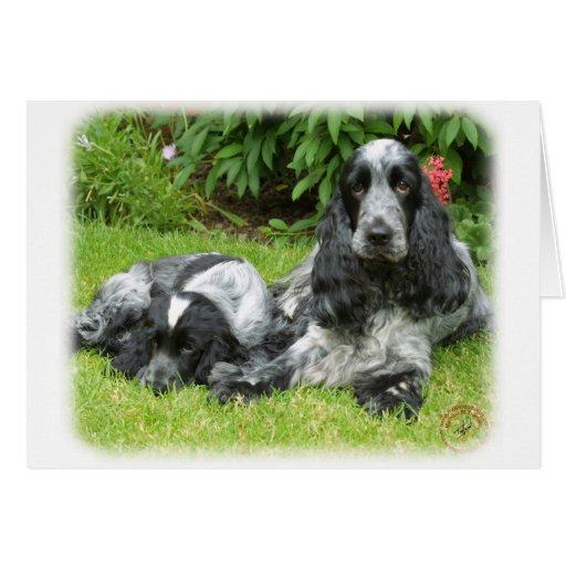 Cocker Spaniel and puppy 9W017D-067 Greeting Card