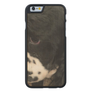 Cocker Spaniel Carved® Maple iPhone 6 Case