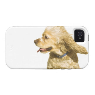 Cocker Spaniel Case-Mate iPhone 4 Cover