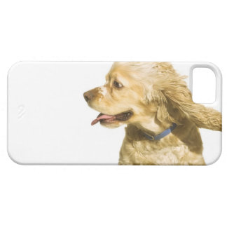 Cocker Spaniel Case For The iPhone 5
