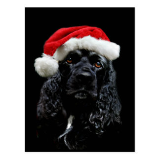Cocker Spaniel Christmas Postcard