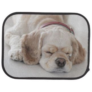 Cocker spaniel dog sleeping car mat