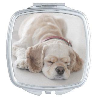 Cocker spaniel dog sleeping compact mirrors
