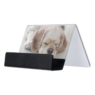 Cocker spaniel dog sleeping desk business card holder
