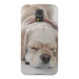 Cocker spaniel dog sleeping galaxy s5 cover