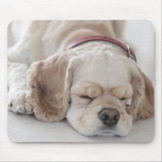 Cocker spaniel dog sleeping mouse mat