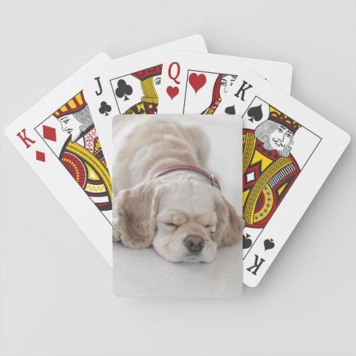 Cocker spaniel dog sleeping card deck