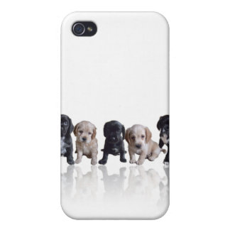 Cocker Spaniel Puppies iPhone4 Cover Case For The iPhone 4