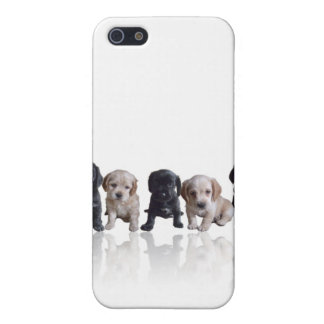 Cocker Spaniel Puppies iPhone4 Cover iPhone 5 Cases