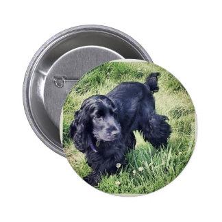 Cocker Spaniel Puppy Pinback Buttons