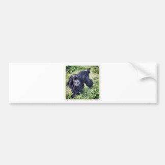 Cocker Spaniel Puppy Bumper Sticker