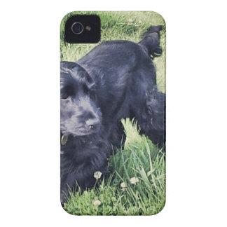 Cocker Spaniel Puppy iPhone 4 Cases