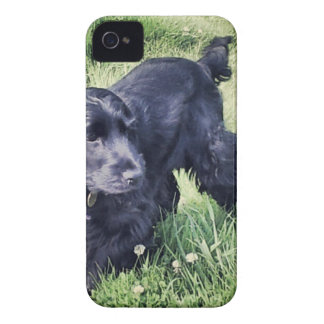 Cocker Spaniel Puppy Case-Mate iPhone 4 Cases