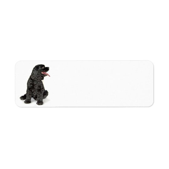 Cocker Spaniel Return Address Label