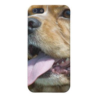 Cocker Spaniel Speck Case iPhone 5 Case