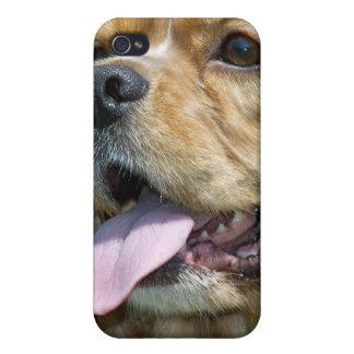 Cocker Spaniel Speck Case iPhone 4/4S Cases