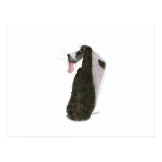Cocker Spaniel, tony fernandes Postcard