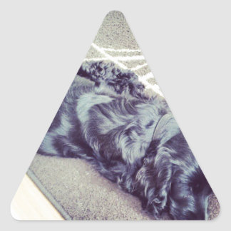 Cocker Spaniel Triangle Sticker